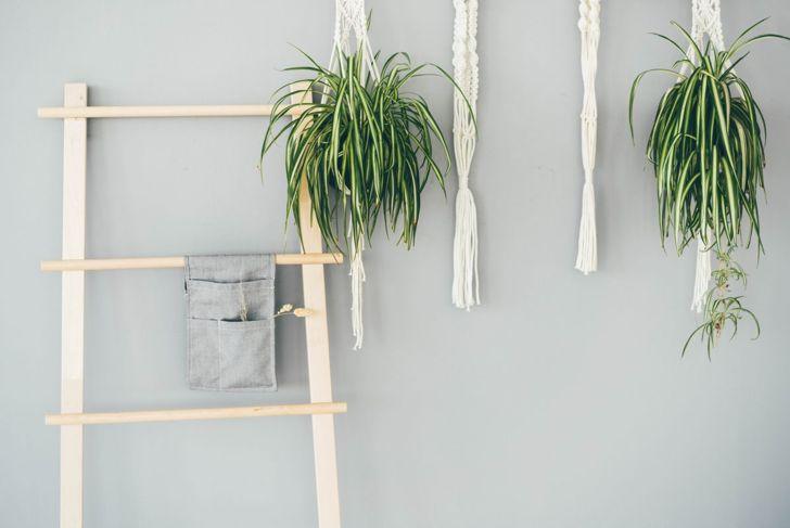 Bathroom with ladder towel rack