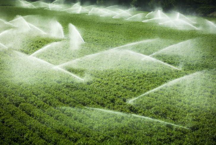fertile soil drains well farm
