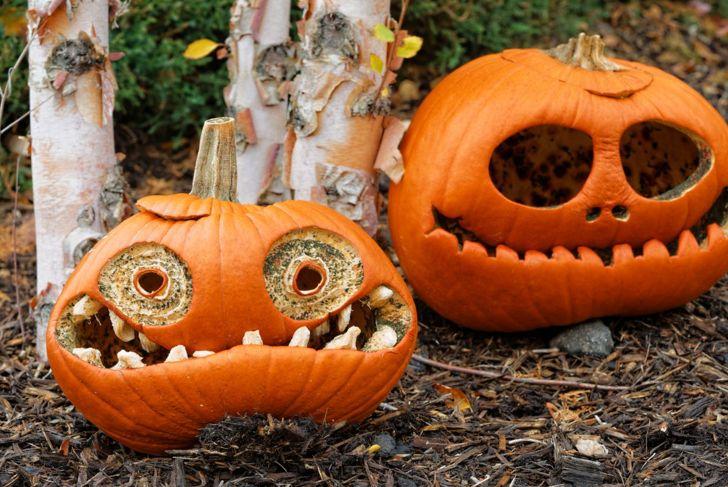 rotting pumpkin smiles decay