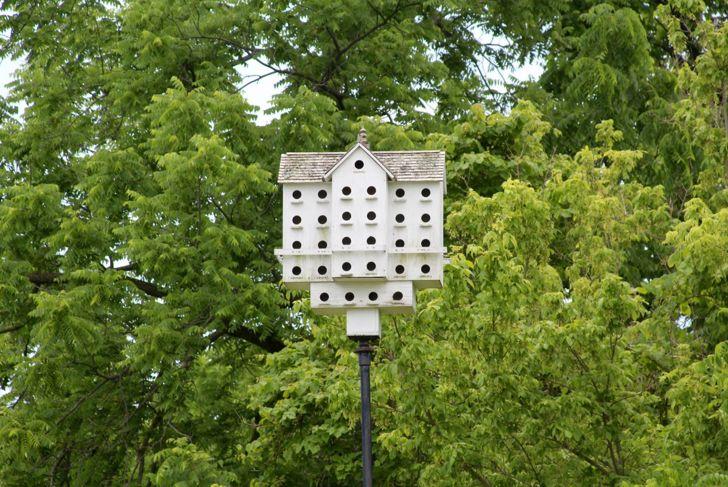 large white birdhouse