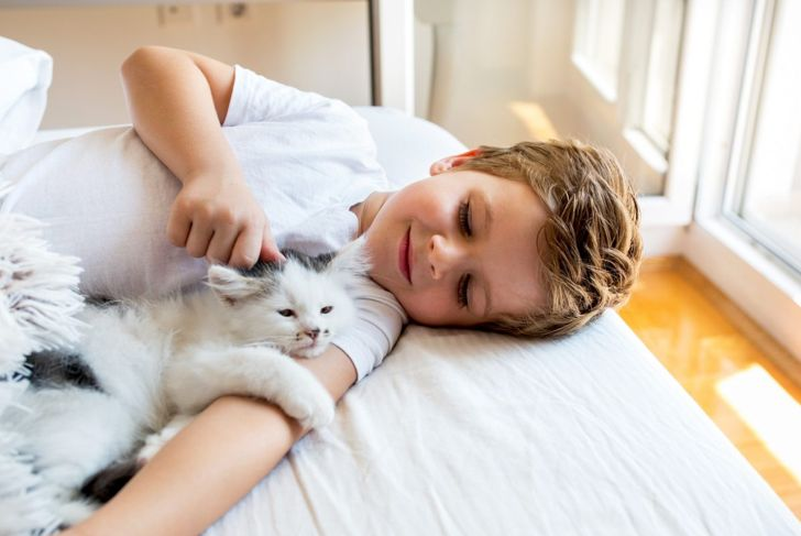 A little boy petting his cat.