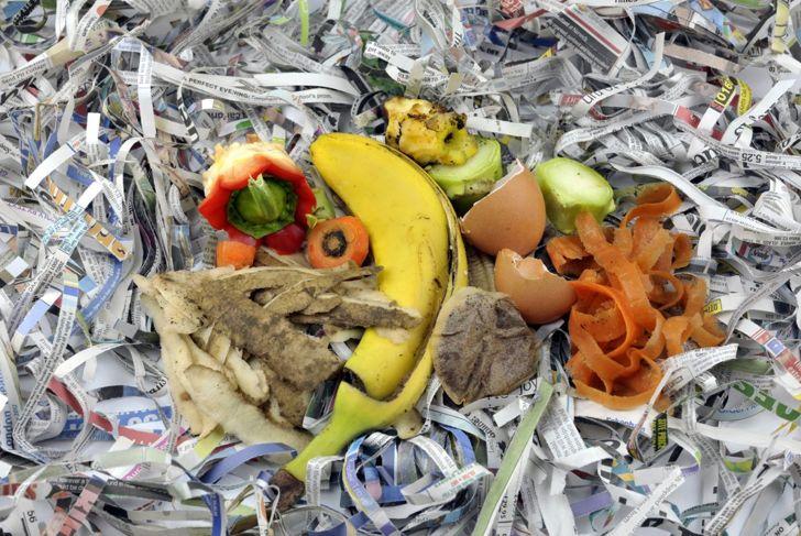 shredded newspaper scraps composting