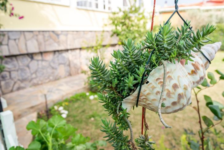 Hang found objects as planters