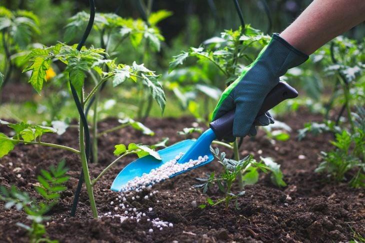 adding fertilizer garden