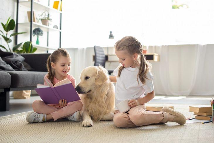 Children Pets Harmful Disinfectant Spray