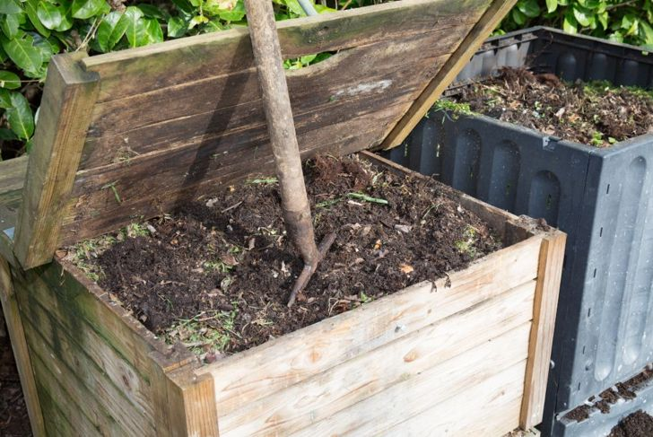 A bin of compost perfect for topdressing the milkweed plant