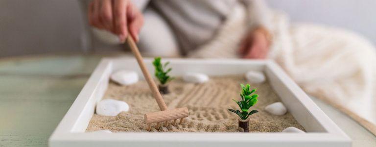 Finding Tranquility in Your Own Zen Garden