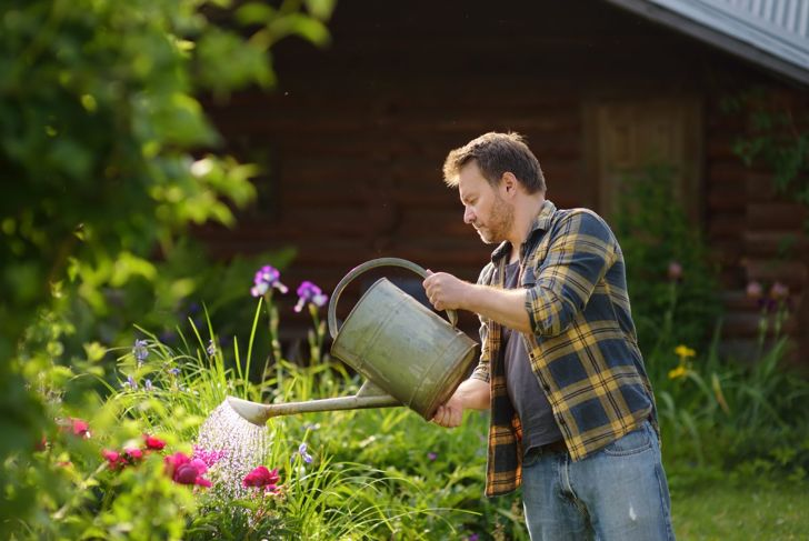Supplemental watering may be necessary during dry periods.