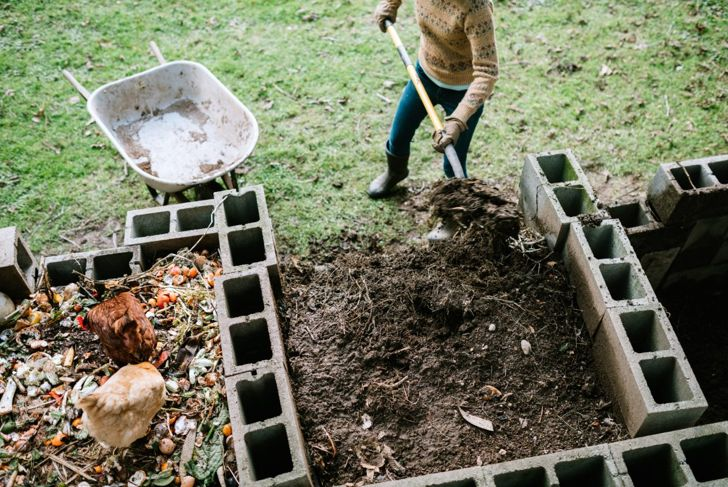 Work compost into the soil before planting your peony.