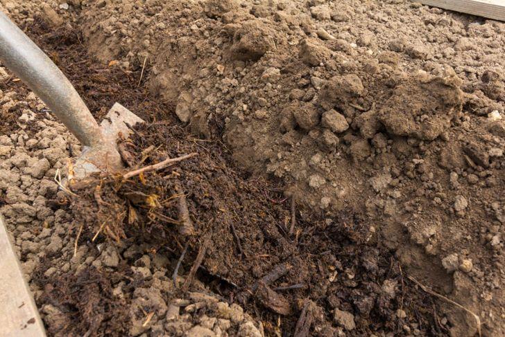 Adding compost to garden with a shovel.