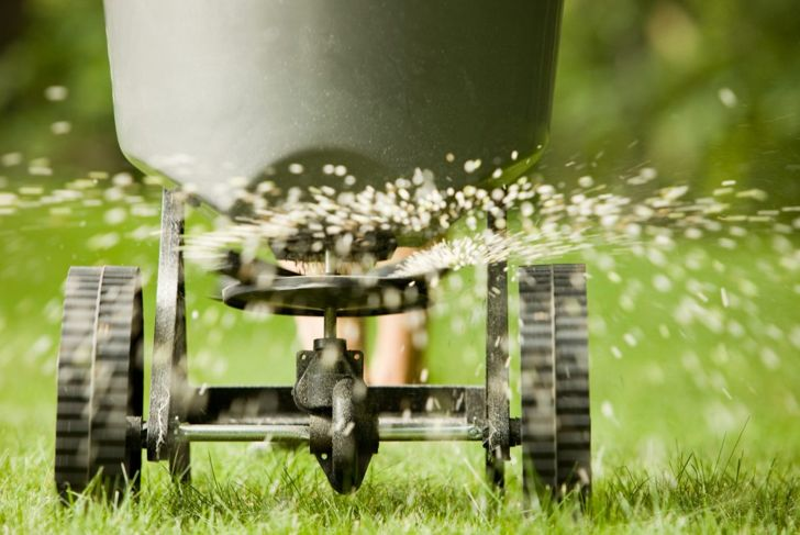 Be conservative with how much bone meal you use; too much phosphorus can damage your plants.