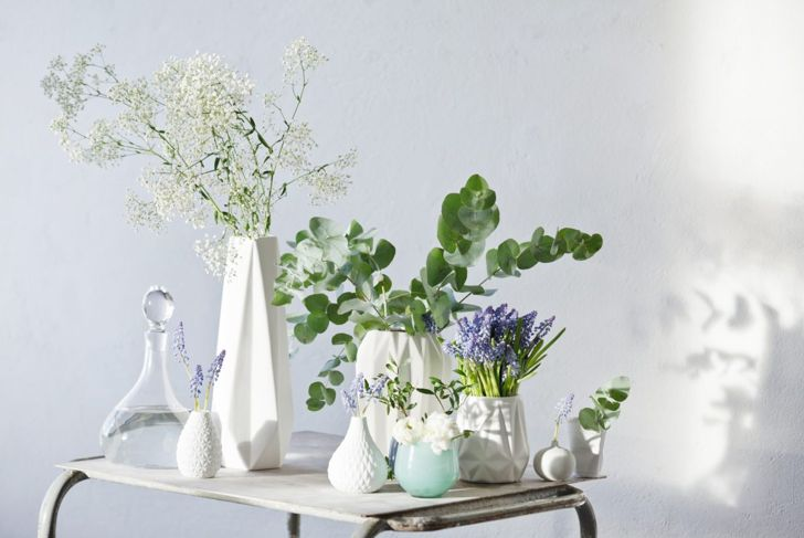 Sizes, shapes, patterns and more are all great pot ideas to make your eucalyptus plant stand out in your home garden.