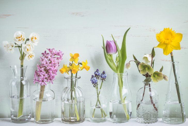 vases, glassware, decoration, style