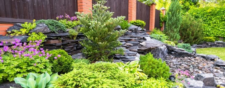 Inspired Rock Garden Ideas for Every Style