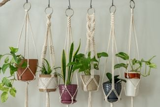 Create an Easy DIY Macrame Planter