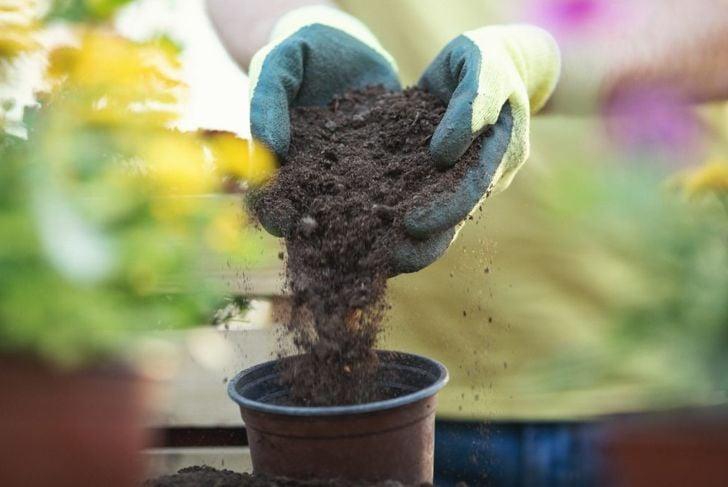 A man adding soil to a pot