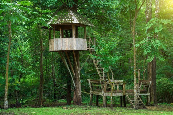 Gazebo tree house