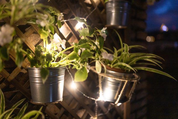 string lights fairy garden illuminated