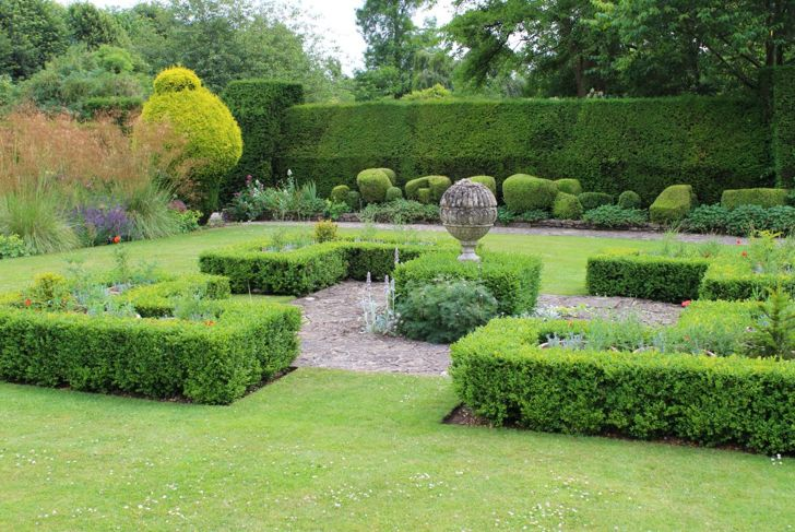 Knot garden created with boxwood shrubs