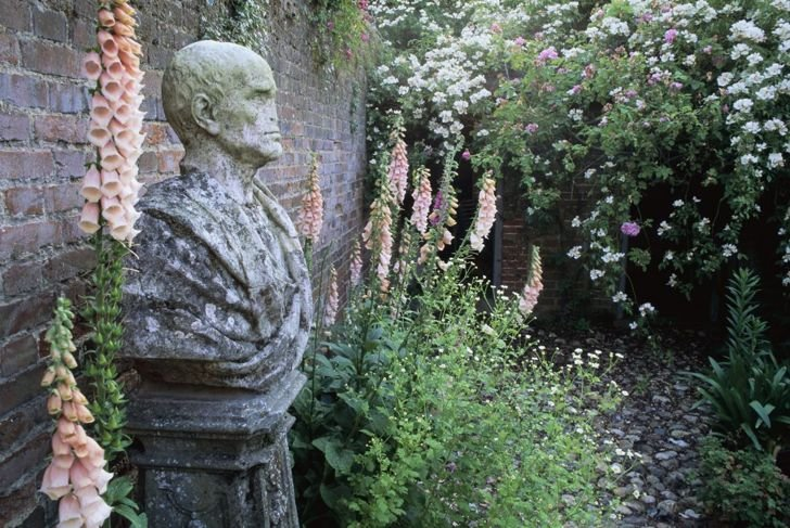 Foxgloves growing beside a roman bust.