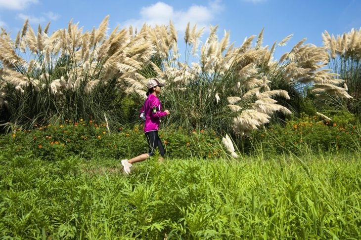 Woman jogging by pampas grass