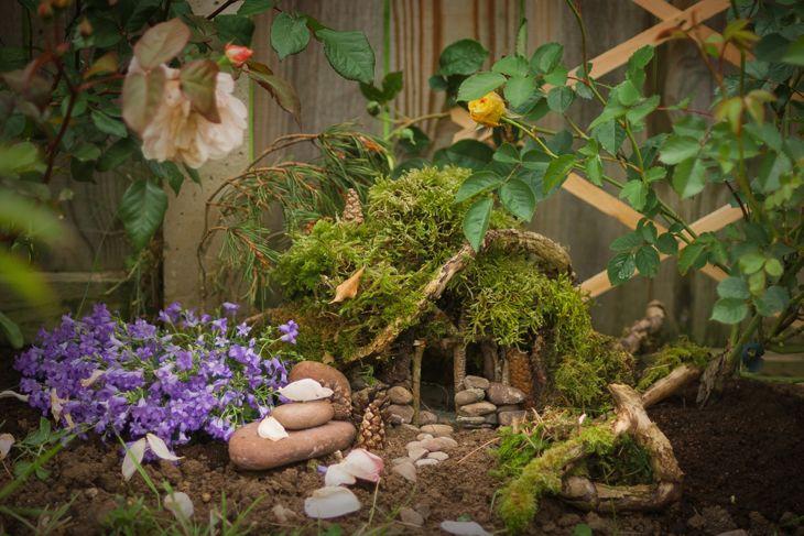tiny flowers fairy garden