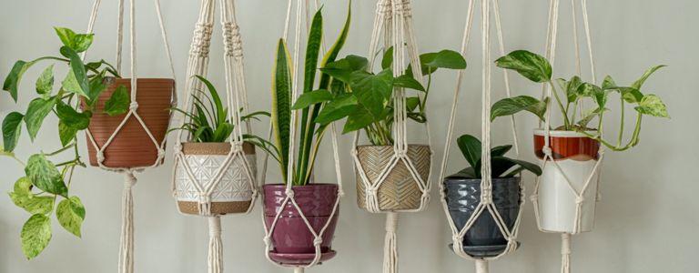 Create an Easy DIY Macrame Planter