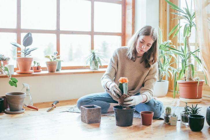 Woman sitting on floor repotting cactus.