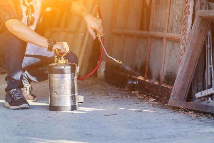 liquid termite pesticide