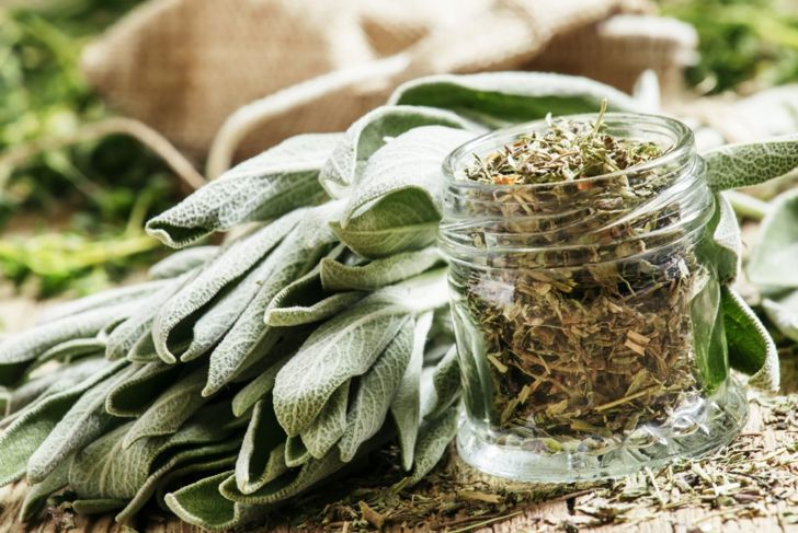 leaves harvest dry sage container