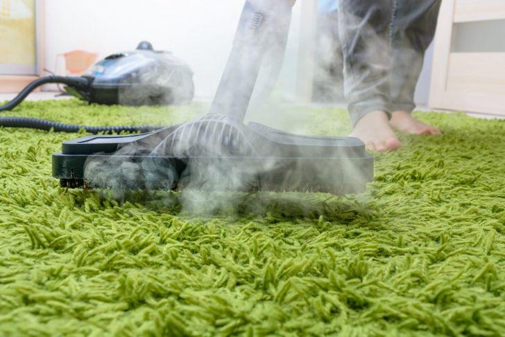 Steam cleaners kill bedbugs