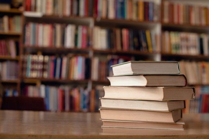 Books, bedbug hiding places