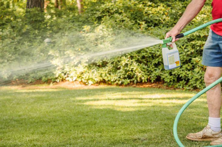 older man spraying herbicide on lawn