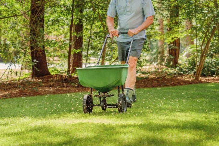 man pushing manual grass fertilizer over his lawn