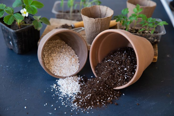 potting soil and vermiculite on a black table