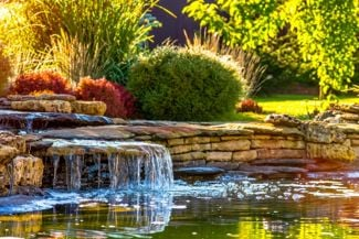 Easy Tips for Keeping Your Backyard Pond Beautiful