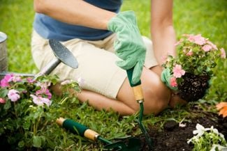 Useful Garden Tips for Every Grower